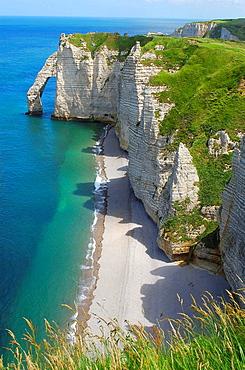 Falaise d'aval  Sea Cliff  etretat  Cote d'Albatre  Haute-Normandie  Normandy  France