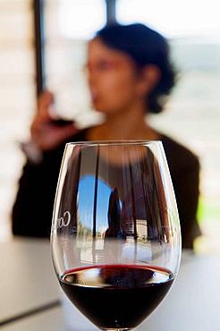 Wine tasting, Comenge winery, Ribera del Duero wine region, Curiel de Duero, Valladolid province, Castilla-Leon, Spain