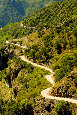 A dirt road passing through the Urique Canyon, the deepest canyon in the Sierra Tarahumara at 6,200 feet, is one of six distinct canyons that make up the Copper Canyon Barranca del Cobre, Chihuahua, Mexico