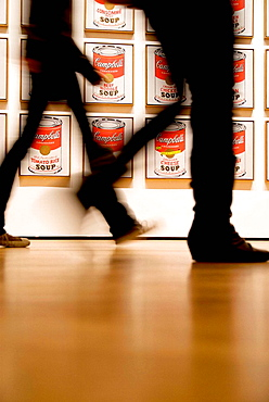 Campbells Soup Cans by Andy Warhol,1962, MOMA, Museum of Modern Art, New York City