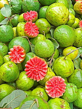 Red Guavas for sale at street market  Indore, Madhya Pradesh, India