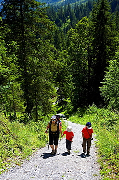 Hiker with children, crossing a forest at the foot of the Eiger  Berneses Alps, Switzerland