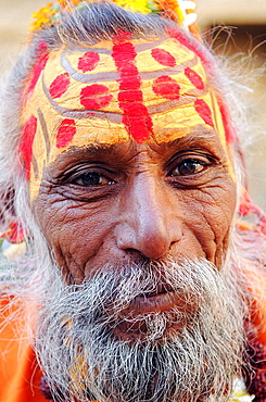 Portrait of an Indian Sadhu (holy man): sadhus have different markings on their forehead, horizontal lines identify this Sadhu as a Shiva Hindu god follower