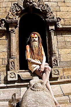 An Indian Sadhu  holy man  with very long rasta style dreadlock hair