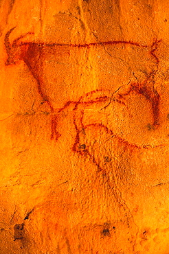 Cave paintings (25000 - 14000 BC) in the Prehistoric grotto of Cougnac, Gourdon, Lot, Midi-Pyrenees, France
