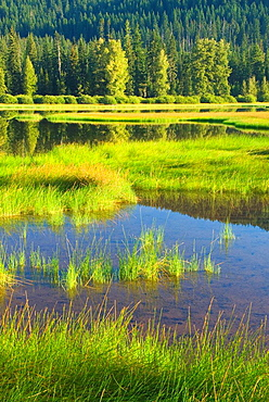 Lost Lake, McKenzie Pass-Santiam Pass National Scenic Byway, Willamette National Forest, Oregon, USA