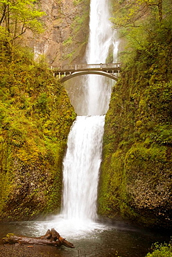 Oregon's number one public destination is Multnomah Falls The water fall is 620 feet high, making it the second highest year-round waterfall in the United States This famous attraction is visited by nearly two million people a year