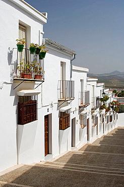 Osuna, Sevilla province, Andalucia, Spain