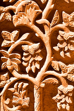 TURKEY, Anatolia, Dogubayazit, Ishak Pasa Palace, Second courtyard, Tomb richly decorated with seljuk carvings of the Tree of Life