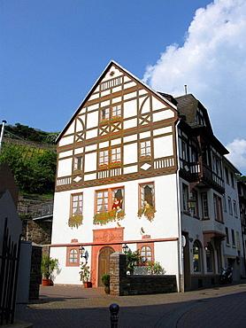 Painting house near Rudesheim