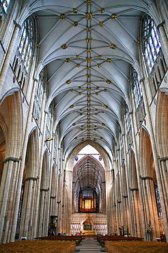 Gothic Cathedral (Minster) of St, Peter, York, Yorkshire, England, UK