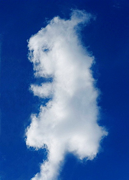 Face in a cloud, concept