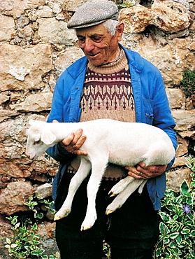Sheep breeder, Roquefort, Aveyron, France