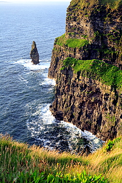 Cliffs of Moher, Clare county, Ireland