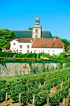 France, Champagne, Haute Marne (51), Hautvillers, Benedictine abbey where friar Dom Perignon discovered the way to make champagne