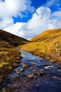 England, Northumberland, Northumberland National Park Buckhamss Walls Burn, a mountain stream running from the Cheviot Hills to the River Coquet in the valley of Coquetdale
