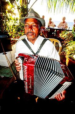 Musician playing accordion at Saturday evening market, Saint Paul, Reunion Island (France)