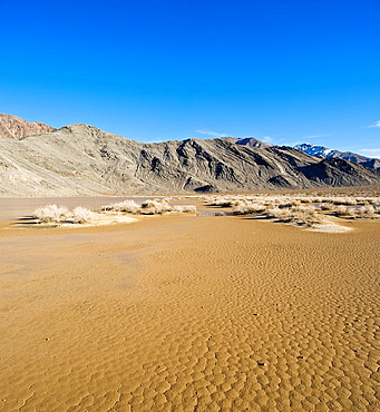 Racetrack playa lakebed muddy from winter rain, Death Valley national park, California