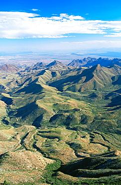 Dry creekbeds, Chisos mountains, Big Bend National Park, Texas, Usa