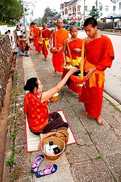 Morning round of buddhist monks begging for alms or Tak Bat, Luang Prabang, UNESCO World Heritage Site, Laos