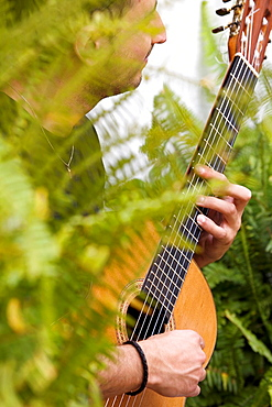 Andalusian guitar chords between the freshness of flowers and plants a Cordobas courtyard