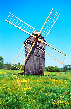 Windmill on a spring meadow