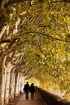 France, Midi-Pyrenees Region, Haute-Garonne Department, Toulouse, strolling on the Quai Lucien Lombard
