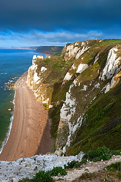 Hooken Cliff, Beer Head, from coastal path, Jurassic Coast World Heritage Site, near Beer and Branscombe, Devon, England