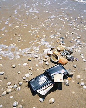 10651649, alluvially, holidays, money, credit cards, sea, purse, beach, seashore, beach holidays, beach property, symbol, tour. 10651649, alluvially, holidays, money, credit cards, sea, purse, beach, seashore, beach holidays, beach property, symbol, tour