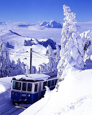 Rigi railway, Goldau, mountain railway, winter sports, winter, transport, snow, Central Switzerland, Europe, Central S. Rigi railway, Goldau, mountain railway, winter sports, winter, transport, snow, Central Switzerland, Europe, Central S
