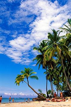 10854216, Las Terrenas, Samana peninsula, Dominica. 10854216, Las Terrenas, Samana peninsula, Dominica