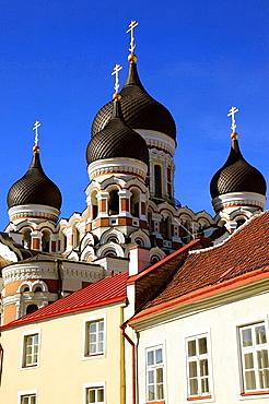 Onion Domes of Alexander Nevski Cathedral Tallinn, Estonia, Baltic States, Northeast Europe.
