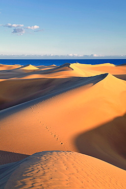 Canary Islands, Gran Canaria, Playa del Ingles, Maspalomas Sand Dunes National Park