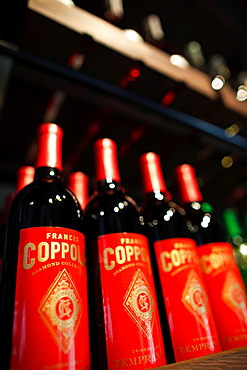 USA, California, Northern California, Russian River Wine Country, Geyserville, Francis Ford Coppola Winery, wine bottles