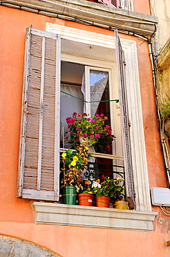 Windows Shutters Flowers Toulon France French Riviera Mediterranean Europe Harbor