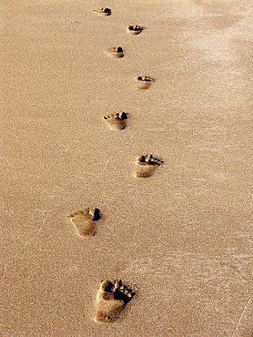 Footprints of a human being on sand at sea shore