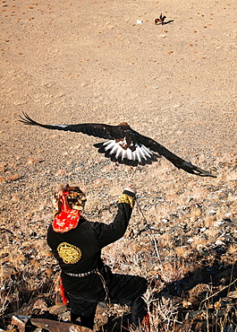Kazakh eagle hunter sends out his golden eagle to fly in the Altai Region of Bayan-Olgii in Western Mongolia