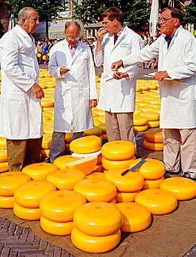 Cheese market, De Waag, Alkmaar, Netherlands