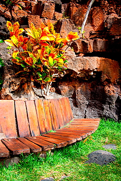 Jameos del Agua, architecture and nature by the artist Cesar Manrique Lanzarote Island Belongs to the Canary Islands and its formation is due to recent volcanic activities Spain