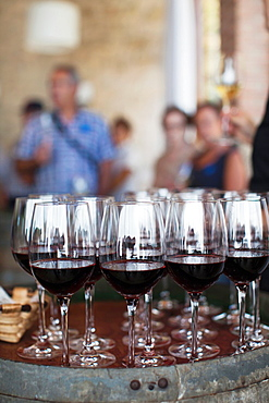 Spain, Basque Country Region, La Rioja Area, Alava Province, Elciego, Bodega Marques de Riscal winery, wine tasting