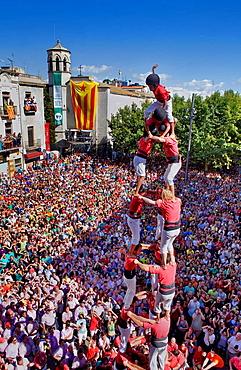 Colla Joves Xiquets de Valls  ´Castellers´ building human tower, a Catalan tradition  Vilafranca del Penedes  Barcelona province, Spain