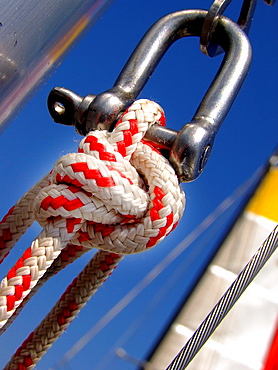Rope with marine knot attached to a carabiner.