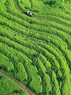 Aerial images of cityscape, landscape, and agriculture in Johor, Malaysia