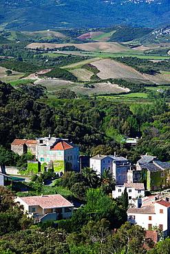 France, Corsica, Haute-Corse Department, Le Cap Corse, Patrimonio, elevated town view