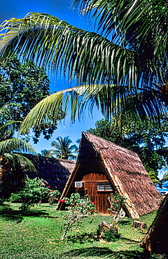 Grass hut of locals at La Digue in the Seychelle Islands of Africa