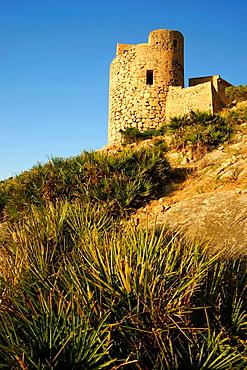 Torre de Cala en Basset Andratx Ponent Mallorca Illes Balears Espana