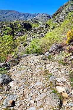 The Fraile peak road in the Sanabria Natural Park Zamora Castilla Leon Spain