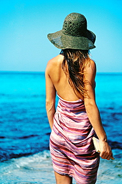 Back View of a brunette woman with book looking at the sea