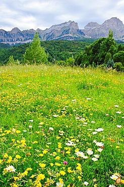 Valle de Tena Pirineos Huesca.