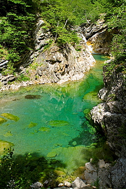 Bellos river in Anisclo Valley, canyon belonging to Ordesa y Monte Perdido National Park Pyrenees Fanlo Huesca province Aragon Spain